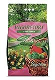 VIGORFIORI S, concime granulare completo con pronto effetto, lunga durata e ferro altament...