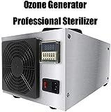 YU MENG Ozonizador Ionizador Comercial Purificador Portátil hogar Esterilizador Profesional Limpiador Comercial de Aire Confort Desodorante esterilizador de Acero Inoxidable 20g