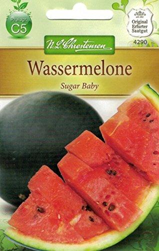Chrestensen Wassermelone 'Sugar Baby'