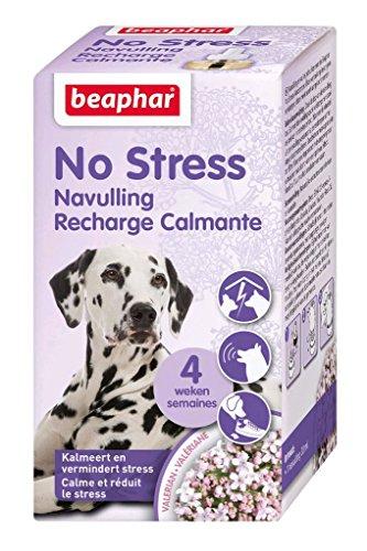 BEAPHAR – NO STRESS – Recharge pour diffuseur électrique calmant à la Valériane pour chien – Réduit le stress & problèmes comportementaux sans dépendance – 4 semaines d'action – 1 recharge 30 ml