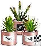 Kitzini Artificial Succulents Boho Decor – 3 Faux Succulents Plants Artificial Rose Gold Desk Accessories – Fake Succulent Boho Room Decor – Fake Succulents Office Decor for Women Desk Decor for Women