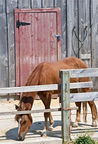 YongFoto 5x7ft Fotografie Achtergrond Schuur Verweerde Strepen Houten Muur Houten Deur Paard Natuur Foto Achtergronden Fotografie Fotoshoot Party Kids Persoonlijk Portret Photo Studio Props