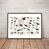 Danjiao Hunderassen Sammlung Illustration Poster Wandkunst Leinwand Gemälde Bild Hundeliebhaber Geschenkidee Nordic Poster Wohnkultur Wohnzimmer 40x60cm