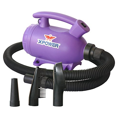 XPOWER B-55 - 2 HP Portable (Do it Yourself) Home Dog Force Dryer for Home Grooming, Backup Dryer, Travel Dryer – Purple