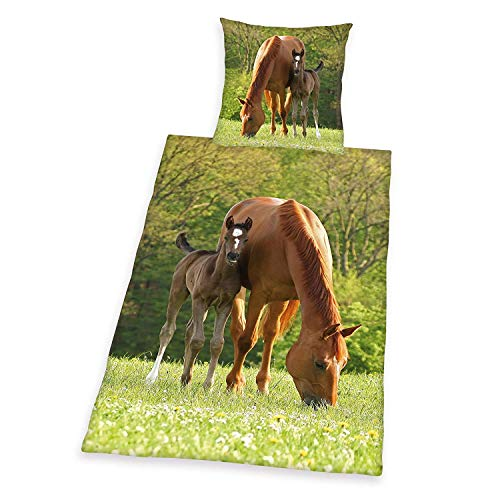 copripiumino singolo ragazzo Herding Young Collection Set di Biancheria da Letto