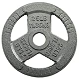 HULKFIT 2-inch Iron Plate for Strength Training, Weightlifting and Crossfit (25 Pounds - Silver)