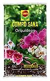 Compo Sana 8 semanas de abono para Todas Las orquídeas, Substrato de Cultivo de Corteza de Pino, 5 L, 42x23x5.5 cm