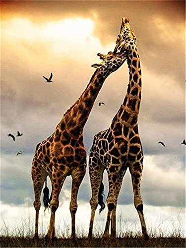 Pintura al óleo por números para adultos jirafa sin marco pintura DIY por números sobre lienzo animales decoración del hogar pared W3 50x65cm