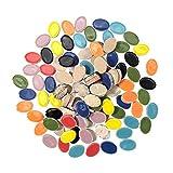 PandaHall 160 azulejos de mosaico de cerámica de 8 colores ovalados de pétalos de flores de porcelana para manualidades, jarrones, macetas, decoración del hogar y artes
