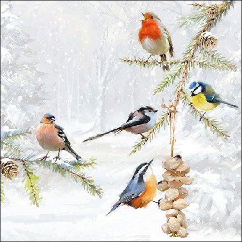 Ambiente Cena Tovaglioli/Partito ca.33x33 all Together - Christmas - Natale - Iverno - Perfetto Come Regalo e Decorazione da Tavolo