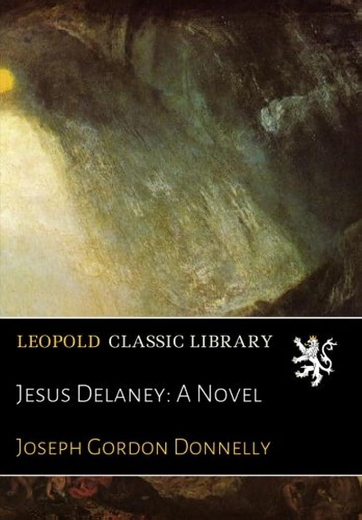 ボランティアおしゃれな陪審Jesus Delaney: A Novel