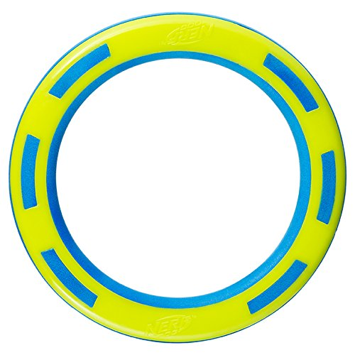 Nerf Dog VP6892E Super Soaker Ring, grün/blau, 22.9 cm