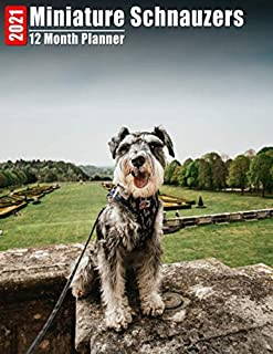 2021 Planner 12 Months Miniature Schnauzers: 2021 Academic Monthly Calendar, Daily Schedule, Important Times, Habit & Heal...