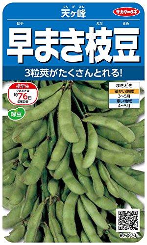 サカタのタネ 実咲野菜7373 早まき枝豆 天ヶ峰 00927373