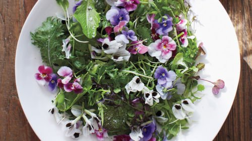 USA SELLER sauvage mesclun comestible/mélange 50-1000 graines HEIRLOOM NON OGM