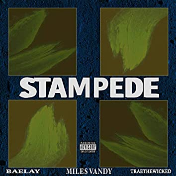 Stampede (feat. Baelay & Traethewicked)
