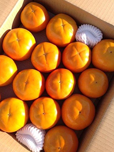 もりもとや 柿 和歌山県産 富有柿  (7.5kg)