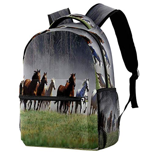 Rodeo Póster con una mochila de vaquero para la escuela, bolsa de libro casual para viajes, estampado 4, Talla única, Mochila de a diario
