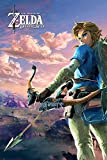 The Legend of Zelda Breath Of The Wild - Hyrule Scene