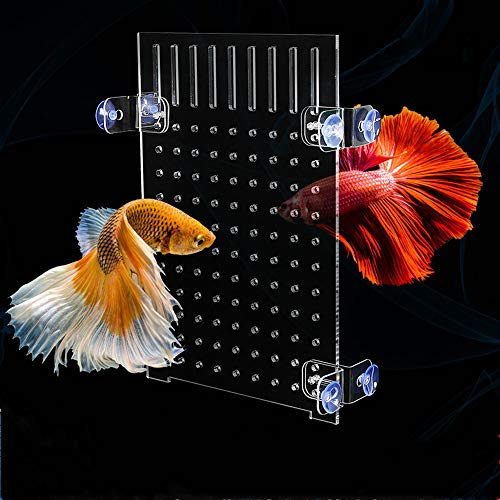 Vinnykud Aquarium Trennwand für Aquarie Fisch Tank Trennung Isolation Board Divider Filter Patition Board Net Aquarium Gitter Divider Fish Tank mit Saugerclips