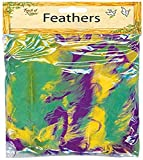 Touch of Nature Turkey Flat Feathers for Arts and Crafts, Mardi Gras Mix