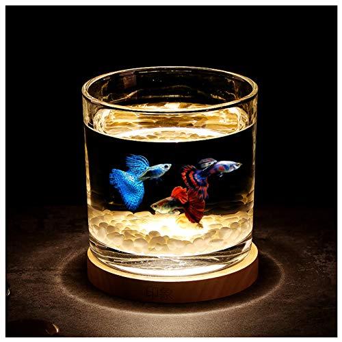 Künstliches Mini-Aquarium, LED-Aquarium-Licht, Schreibtisch, Mini-Aquarium, Beleuchtung Nachtlampe, zylindrisch