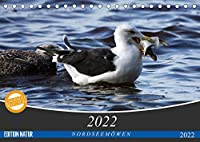 NORDSEEMOeWEN (Tischkalender 2022 DIN A5 quer): Bodenbrueter (Monatskalender, 14 Seiten )