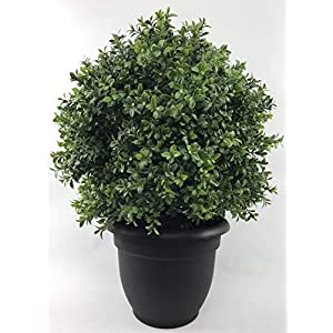 One 24 inch Tall Outdoor Artificial 16 inch Wide Boxwood Topiary Ball Bush UV Rated with Free 10 inch Black Decorative Pot by Silk Tree Warehouse Company Inc