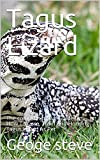 Tagus Lizard : The comprehensive Guide On How To Care, Train And Housing Tagus Lizard As Pet (English Edition)