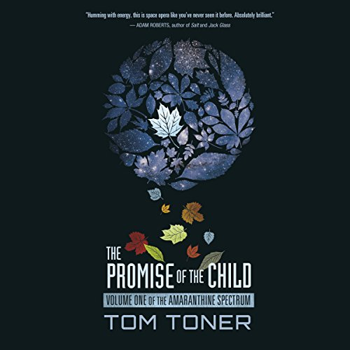The Promise of the Child audiobook cover art
