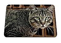 22cmx18cm マウスパッド (猫ぶち目うそ) パターンカスタムの マウスパッド