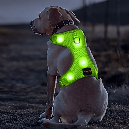 BSEEN Comfort Control Dog Harness LED Pets Walking Accessory USB Rechargeable Soft Mesh Vest with Adjustable Belt Padded Lightweight Collar for Dogs Puppies (Medium, Green)