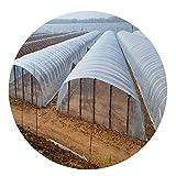 Lonas Impermeables Exterior LJIANW Polietileno Película De Efecto Invernadero,Claro El Plastico Invernadero Cubrir 4-mil For Crecer Túnel, 24 Tamaños (Color : Claro, Size : 4x6m)