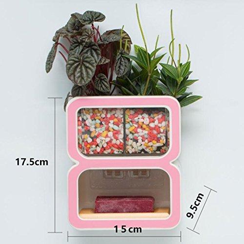 Tapis de bain Xuan - Worth Having Créative numéro 8 Style Porte-Savon Rose Ventouse Type étagère