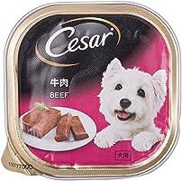 CESAR Dog Food Wet Food Beef 100g (Carton of 24)