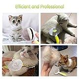 Zoom IMG-2 mennyo spazzola per gatto cane