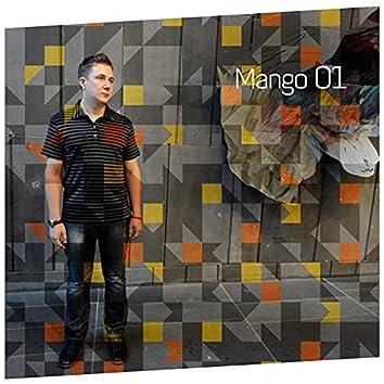 Silk Digital Pres. Mango 01