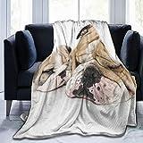 Marutuki Couverture de Lit,Beau Chiot Bouledogue Anglais avec Son père,Canapé de lit Toutes Saisons en Microfibre Couverture,60' x 80'