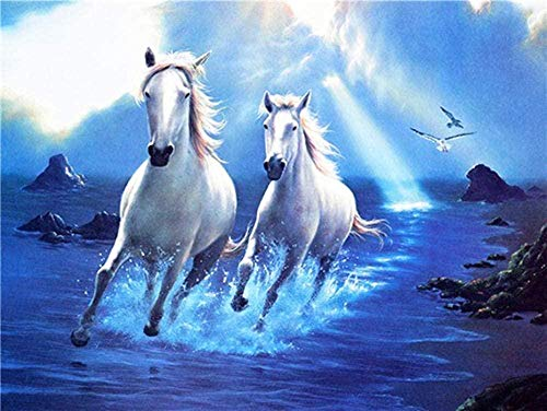 Diy 5D Diamante Pintura Por Número Kit Ryutp Diamond Painting Kits Paisaje Animal Diamond Painting Taladro Completo Kit Fabricación De Mosaicos Regalo (Caballo Blanco 30X40Cm)
