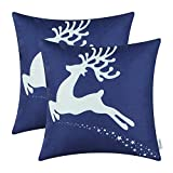 Top 10 Navy Blue Christmas Decors