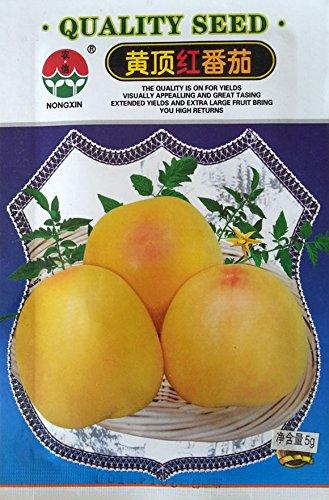 6pcs de vente chaude / sac Lama Grape Delicious Seeds Santé Fruit bricolage jardin Balsampear fruits légumes Graines