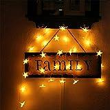 クリスマスツリー ワードローブ テーブル ガーデンパーティー フェンス パティオ イルミネーション 飾りスター 豪華LED星イルミネーションライト 30LED 3M 電池モデル 室内装飾 Home Led