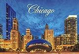 Chicago Bean, Cloud Gate, Millennium Park, Illinois, Souvenir Magnet 2 x 3 Fridge Magnet
