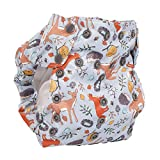 Cloth Diaper – Smart Bottoms Smart One 3.1 – All-in-One – 100% Organic Cotton Interior – 10-35lbs … (Forest Friends)