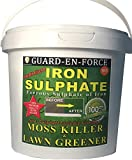 PREMIUM Iron Sulphate 1 KG (makes 500 Litres when diluted) Tub PURE LAWN