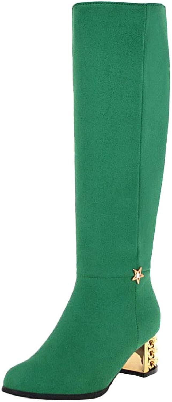 AicciAizzi Women Zip Long Boots Chunky Heel