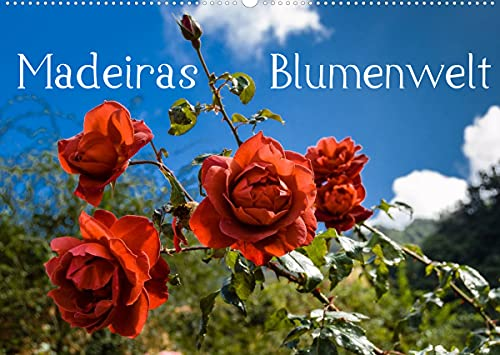 Madeiras Blumenwelt (Wandkalender 2022 DIN A2 quer)