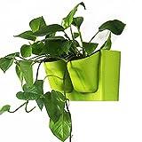 VORCOOL - Macetero de pared de plástico reciclado con sistema de autorriego vertical para jardinería (verde)