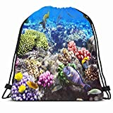 DHNKW Drawstring Backpack String Bag 14x16 Polyps Reef Coral Fish Sheikh Red Sea Egypt Animals Wildlife Nature Ocean Aquarium Hawaii Under Water Life Sport Gym Sackpack Hiking Yoga Travel Beach