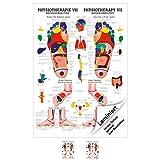 Sport-Tec Reflexzonen Fuss Mini-Poster Anatomie 34x24 cm